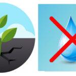 Jusqu'au 30 novembre : Usage restreint de l'eau !