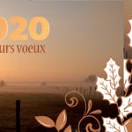 17 Janvier : Cérémonie des voeux